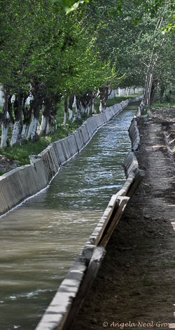 Water destined for the Aral Sea is diverted for irrigation in unstable openair channels