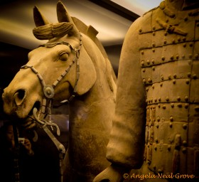 horse with terracotta warrior