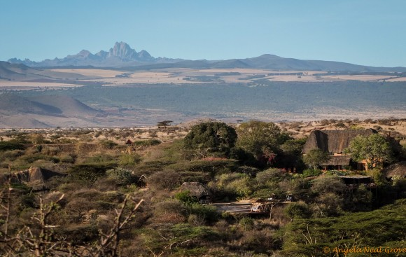 Lewa with Mt. Kenya in the background