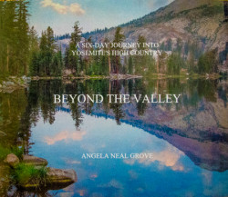 """Beyond The Valley"" published by Angela Neal Grove"