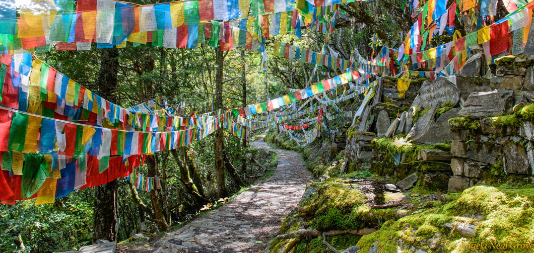 Pilgrimage Route at monastery in Tacheng, China