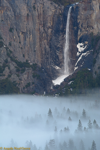 Bridalveil Falls in Yosemite Valley ©Angela Neal Grove