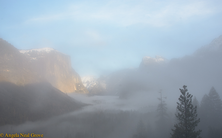 Yosemite Valley from Tunnel View Overlook. ©Angela Neal Grove