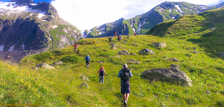 Mont Blanc Challenge: Hiking up to the snowlike in the French Alps through wild flowers