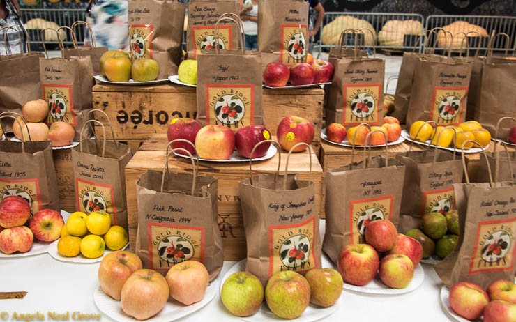 Heirloom seeds Expo has Global Message: There was an opportunity to taste heirloom varieties of apples. The average American supermarket only sells only five varieties of apples.