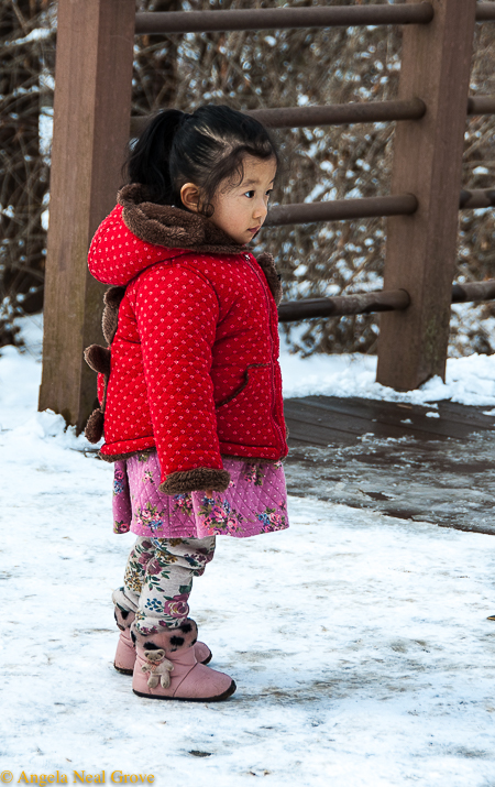Korea's DMZ Through My Lens: This little girl stood and watched intently as care packages, destined for North Korean relatives, were loaded at the border. Will she see re-unification in her lifetime?