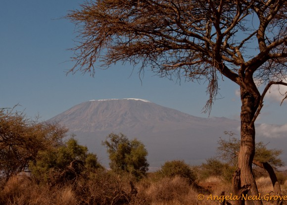 Mr. Kilimanjaro showing receding snow