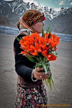 Wild tulips for sale in the Ferghana Valley