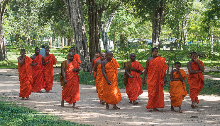 Sri Lanka: A Paradise Discovered. Monks strolling in Anuradhapura which is an ancient sacred city for Buddhists. //Image: A.N.Grove