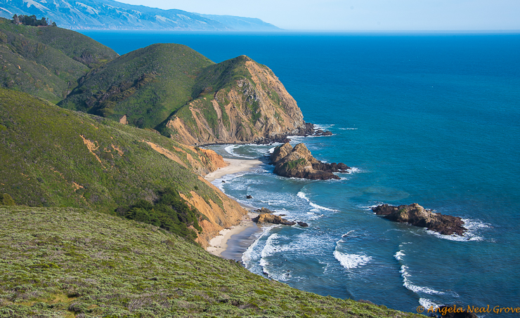 Big Sur Spring Recovery Update