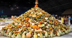 Heirloom Seed Spectacular Wows Sonoma